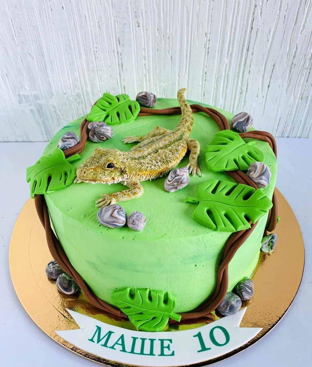 Торт Ящерица заказать в Минске